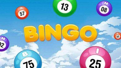 Photo of Online Bingo Keeps Getting More Popular